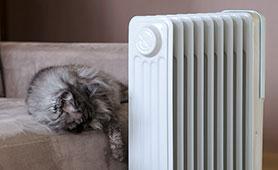 https://www.biccamera.com/bc/c/images/bn/278x170/osusume_oil_heater_bn278x170.jpg