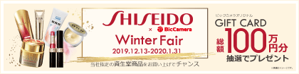 SHISEIDO Winter Fair