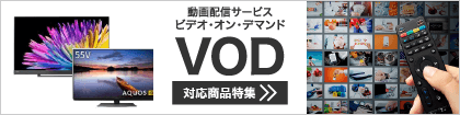 https://www.biccamera.com/bc/c/images/bn/420x105/vodProducts_420x105.png