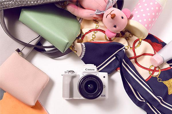 Vlog用カメラの選び方 特徴 バランスが良いミラーレス一眼カメラ