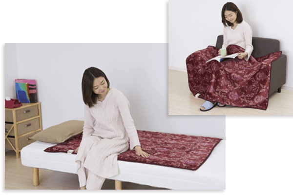 電気毛布の選び方 タイプを選ぶ 掛敷タイプ